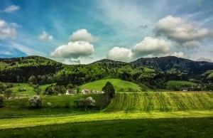 Black Forest Hills (2)